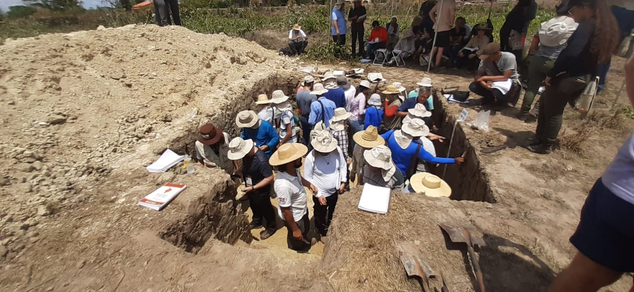 Researchers examining a soil profile (Photo: Martins, A. 10/2019)